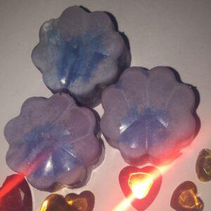 Blueberry & vanilla  | x2 melts